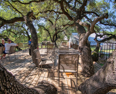Upper deck - Tree house view